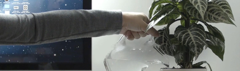 Persoana udand o planta